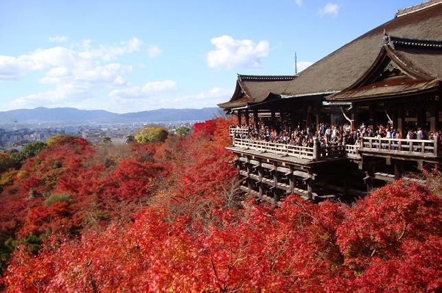 清水寺「清水の舞台」付近の紅葉
